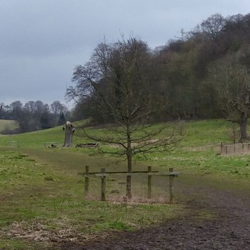 Landscape test shot
